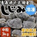 送料無料 青森県十三湖 冷凍しじみ中粒 3kg(ヤマトシジミ)砂抜き済み 国産