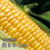 【嶽きみ】青森県が誇るプレミアムトウモロコシ12本セット!まるで果物のような甘さ【送料込】[同梱不可]