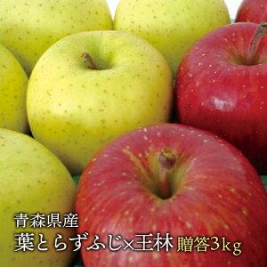 送料無料 青森県産 葉とらずふじ・王林セット ご贈答用3kg (約10個前後)プレミアムリンゴギフトに最適 青森産サンふじ