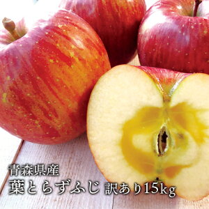 送料無料 青森県産 葉とらずふじご家庭用15kg (約42〜54個)人気の訳ありリンゴ 青森産 訳あり サンふじ