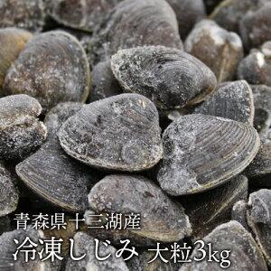 送料無料 青森県十三湖 冷凍しじみ大粒 3kg(ヤマトシジミ)砂抜き済み 国産