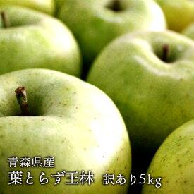 送料無料 青森県産 葉とらず王林 ご家庭用5kg (約14〜18個)人気の訳ありリンゴ [※産地直送・同梱不可]