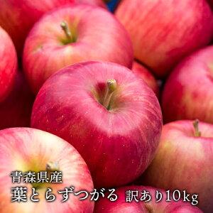 送料無料 青森県産 葉とらずサンつがる ご家庭用約10kg (約28〜40個)人気の訳ありリンゴ [※産地直送・同梱不可]