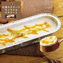 【 新発売 】【 みれい菓 】 札幌カタラーナ キャラメルマキアート (260g) アイスクリームみたいな とろける濃厚アイスプリン お取り寄せ スイーツ ケー... ランキングお取り寄せ