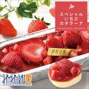 【 みれい菓 】 スペシャルいちごカタラーナ(320g) アイスクリームみたいな とろける濃厚アイスプリン お取り寄せ ス…