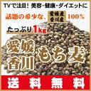 TVで話題のダイエットで注目!希少な愛媛・香川産100%もち麦・ダイシモチ1kg(500gX2袋)送料無料