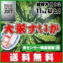 ⇒光センサー糖度選果済で超超BIGな11kg以上の大栄すいか・美味安心のハイクオリティ送料無料JA鳥取中央