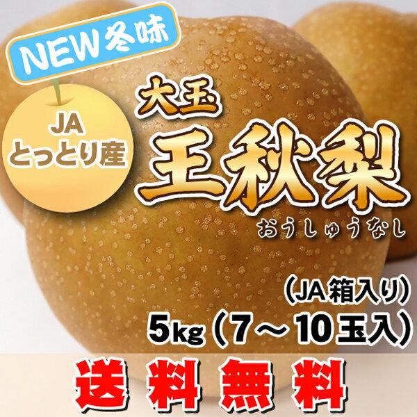 【高糖度・冬味】稀少!大玉・王秋梨(おうしゅうなし)5kg(7〜10玉)JA鳥取中央製品箱入・送料無料こたつに王秋梨は美味です。【スポット限定個数安すぎる価格】