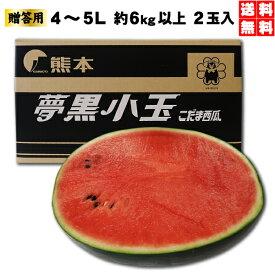 夢黒小玉すいか4〜5L(2玉入)約6kg以上 贈答用 熊本産