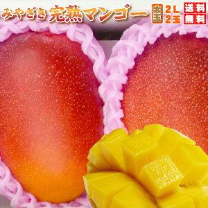 贈答用・みやざき完熟マンゴー 大玉2LX2玉(700g以上)最上級・赤〜青秀品【お中元ギフト】