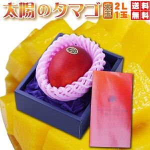 みやざき完熟マンゴー 太陽のタマゴ 大玉2L・1玉(350g以上)最上級のブランド・赤〜青秀品【お中元ギフト】父の日