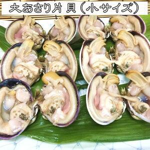 大アサリ[大あさり] 片貝 20片貝前後 小サイズ [愛知県産] 天然