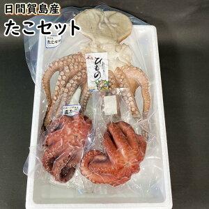たこ セット 真蛸 日間賀島産