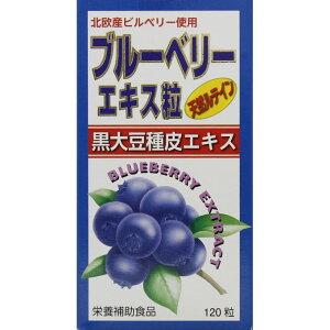ブルーベリーエキス粒 イン ルテインα 120粒 12個セット