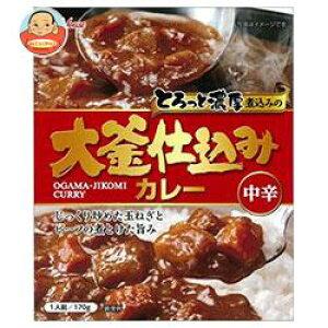 ハウス食品 大釜仕込みカレー 中辛 170g×30個