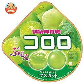 UHA味覚糖 コロロ マスカット 48g×6袋入