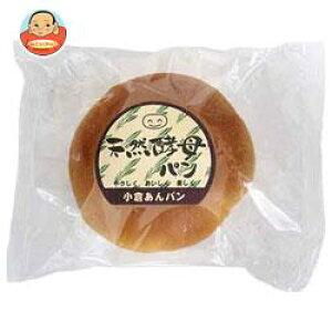 天然酵母パン 小倉あんパン 12個入