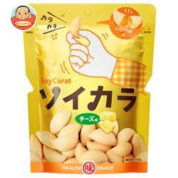大塚製薬 ソイカラ(SoyCarat) チーズ味 27g×18袋入