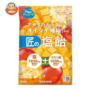 送料無料 サラヤ 匠の塩飴 マンゴー味 100g×20本入 ※北海道・沖縄は別途送料が必要。