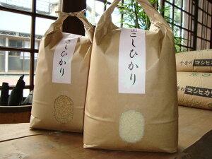 コシ白15kg<千葉の隠れた逸品>鶴舞地区コシヒカリ「極み」白米15kg令和2年産 千葉県産【RCP】