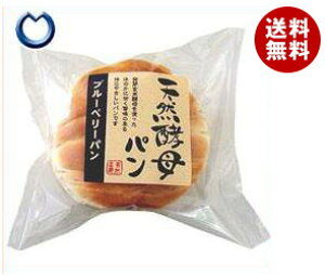 送料無料 天然酵母パン ブルーベリーパン 12個入 ※北海道・沖縄・離島は別途送料が必要。