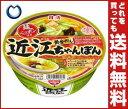【送料無料】日清食品 麺ニッポン 近江ちゃんぽん 111g×12個入 ※北海道・沖縄・離島は別途送料が必要。