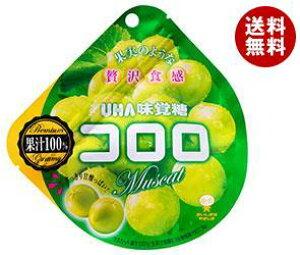 【送料無料】UHA味覚糖 コロロ マスカット 48g×6袋入 ※北海道・沖縄・離島は別途送料が必要。