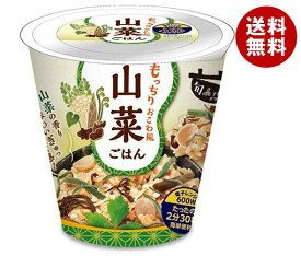送料無料 幸南食糧 旬 de riz 山菜ごはん 160g×12個入 ※北海道・沖縄・離島は別途送料が必要。