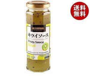 送料無料 和歌山産業 フルーツソース キウイ 160g×12本入 ※北海道・沖縄・離島は別途送料が必要。