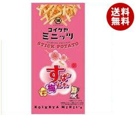 送料無料 コイケヤ コイケヤミニッツ スティックすっぱムーチョ さっぱり梅味 40g×12(6×2)袋入 ※北海道・沖縄・離島は別途送料が必要。