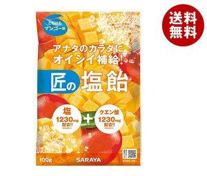 送料無料 サラヤ 匠の塩飴 マンゴー味 100g×20本入 ※北海道・沖縄・離島は別途送料が必要。