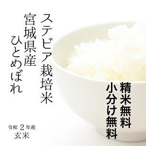 【調整済玄米!】特別栽培米 宮城県産 すてびあ栽培米ひとめぼれ令和2年 検査一等玄米 30kg 【送料無料】【精米 又は 小分け無料】