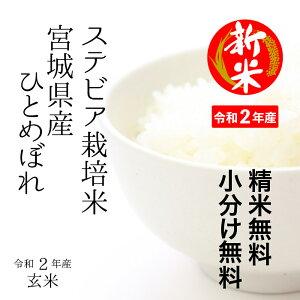 宮城県産すてびあ栽培米ひとめぼれ玄米30kg