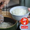 【エントリーでポイント3倍!新米!】特別栽培米 宮城県登米産 環境保全米 ひとめぼれ令和2年 白米 10kg(5kg×2) 【送料無料】