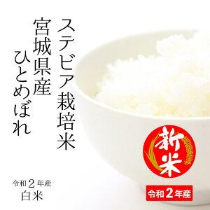 宮城県産すてびあ栽培米ひとめぼれ10kg