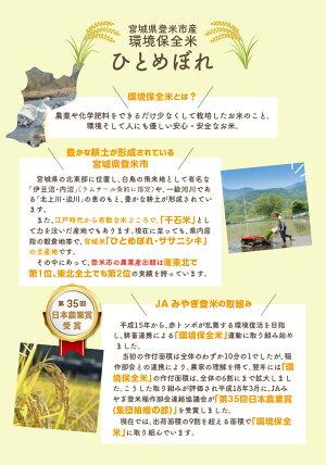 特別栽培米宮城県登米産環境保全米ひとめぼれ30kg【送料無料】