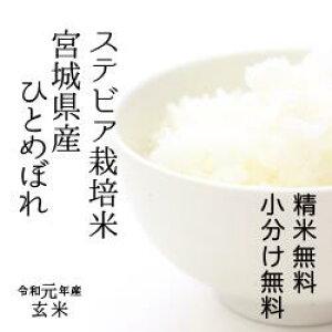 特別栽培米 宮城県産 すてびあ栽培米ひとめぼれ令和元年 検査一等玄米 30kg 【送料無料】【精米 又は 小分け無料】