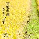 特別栽培米 宮城県登米産 環境保全米 ひとめぼれ令和元年 検査一等玄米 30kg 【送料無料】【精米 又は 小分け無料】