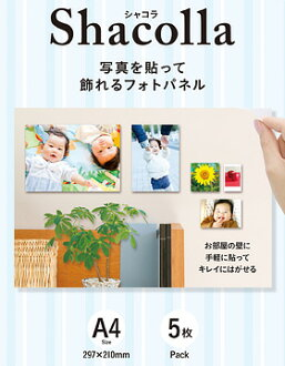 """I hold five pieces of Fujifilm シャコラ (Shacolla) wall type A4 size and """"am going to send it out three business days after immediate delivery ..."""" [five pieces case advantageous! The photopanel of the wall type to put a photograph, and to be able to put on"""