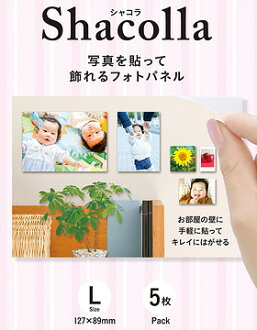 """""""Shipment three business days after immediate delivery ..."""" containing five pieces of Fujifilm シャコラ (Shacolla) wall type large size [five pieces case advantageous! The photopanel of the wall type to put a photograph, and to be able to put on the flat pla"""