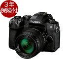 [3年保険付] Panasonic LUMIX G99 レンズキットDC-G99H-K ルミックスG99 Body + LUMIX G VARIO 14-140mm / F3.5-5.6II…