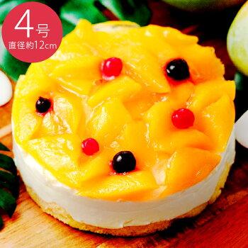 マンゴーの王様【アルフォンソマンゴー】とレアチーズケーキの贅沢な組み合わせ南国を思わせるフルーツケーキ【ぎゅッと果実】マンゴーフルーツケーキ