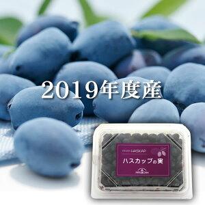 【北海道産】冷凍ハスカップの実(200g)