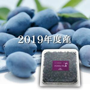 【北海道産】冷凍ハスカップの実(500g)