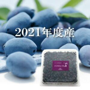 公式【北海道産】2021年度産 冷凍ハスカップの実(500g)