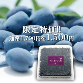 【限定特価/2018年度産】冷凍ハスカップの実(500g)