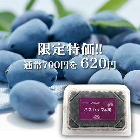 【限定特価/2018年度産】冷凍ハスカップの実(200g)