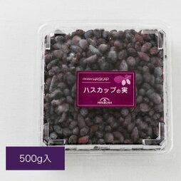 冷凍ハスカップの実(500gパック詰)