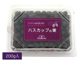 冷凍ハスカップの実(200gパック詰)