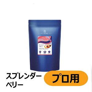 【訳あり】三井農林 ホワイトノーブル スプレンダーベリー 225g(業務用 茶葉不使用 フルーツ)